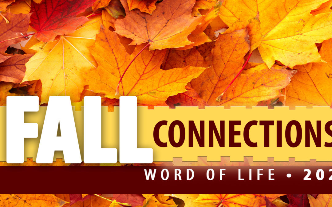 Fall Connections